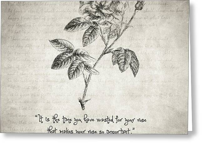 Romanticism Drawings Greeting Cards - The Little Prince Rose Quote Greeting Card by Taylan Soyturk
