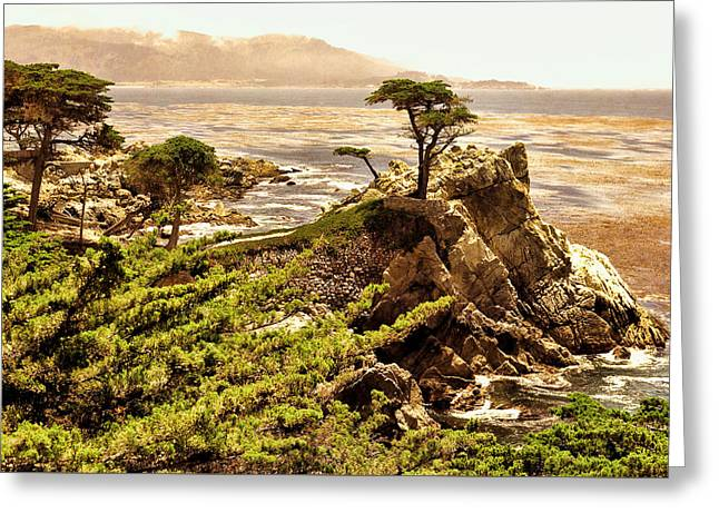 The Lone Cypress Greeting Cards - The Lone Cypress California Greeting Card by Bert Hoferichter