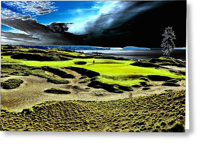 Us Open Greeting Cards - The Lone Tree on Chambers Bay - #15 Greeting Card by David Patterson