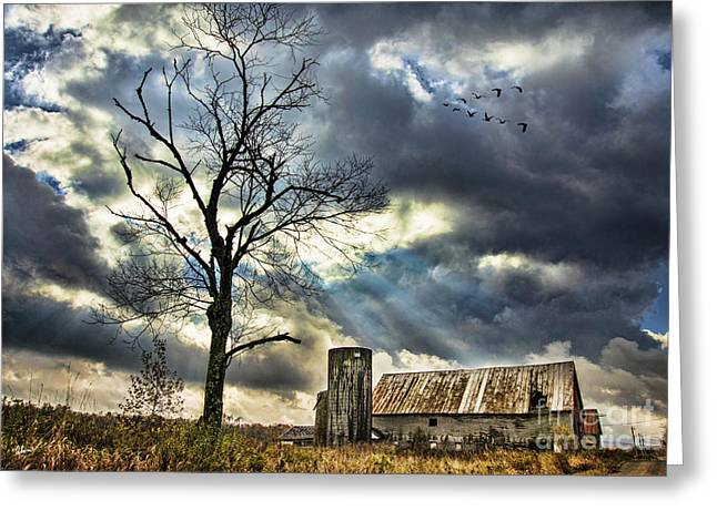 Old Maine Barns Greeting Cards - The Long Journey South Greeting Card by Alana Ranney