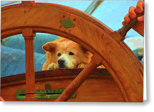 Sailing Ship Greeting Cards - The Lookout Greeting Card by Clarence Alford