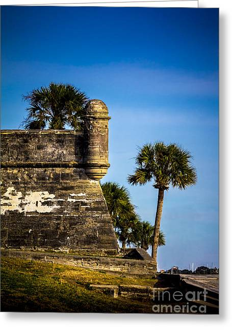 Jacksonville Greeting Cards - The Lookout Greeting Card by Marvin Spates