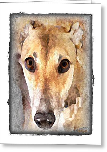 Greyt Greeting Cards - The Loving Eyes of a Greyhound Greeting Card by Terry Mulligan