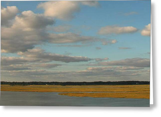 Royal Art Greeting Cards - The Lowcountry Expanse  Greeting Card by David Paul Murray