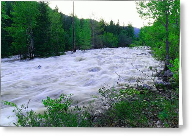 The Mad River Greeting Card by Jeff Swan