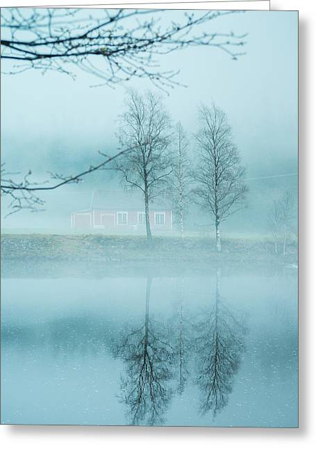 Kjona Greeting Cards - The magic in the fog Greeting Card by Mirra Photography