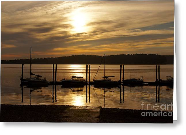 Sailboat Art Greeting Cards - The Marina Greeting Card by Sean Griffin