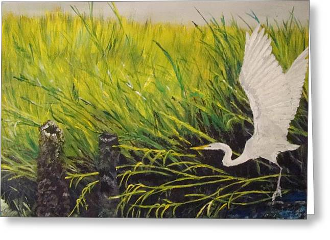 Hunting Bird Greeting Cards - The Marsh Greeting Card by Yvonne Breen