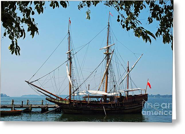 Wooden Ship Greeting Cards - The Maryland Dove Ship Greeting Card by Thomas R Fletcher