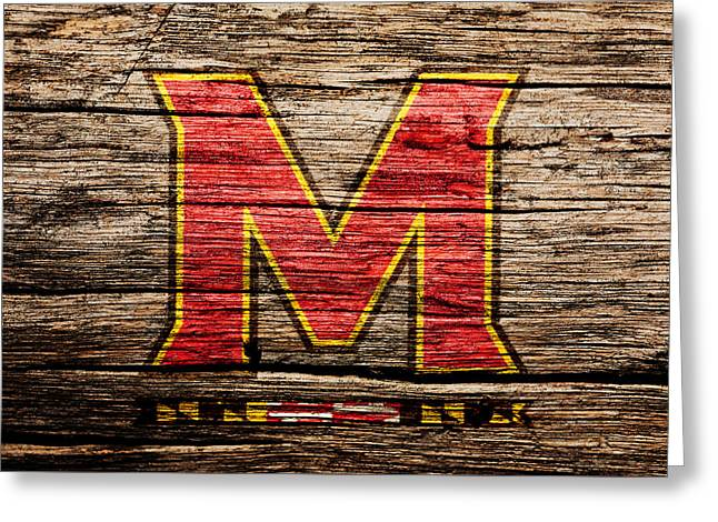 The Maryland Terrapins  Greeting Card by Brian Reaves