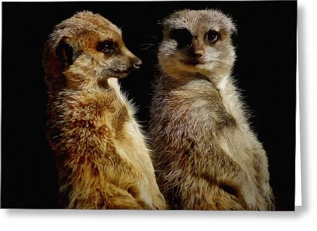 The Meerkats Greeting Card by Ernie Echols