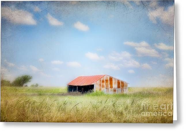Shed Digital Greeting Cards - The Meeting Place Greeting Card by Betty LaRue