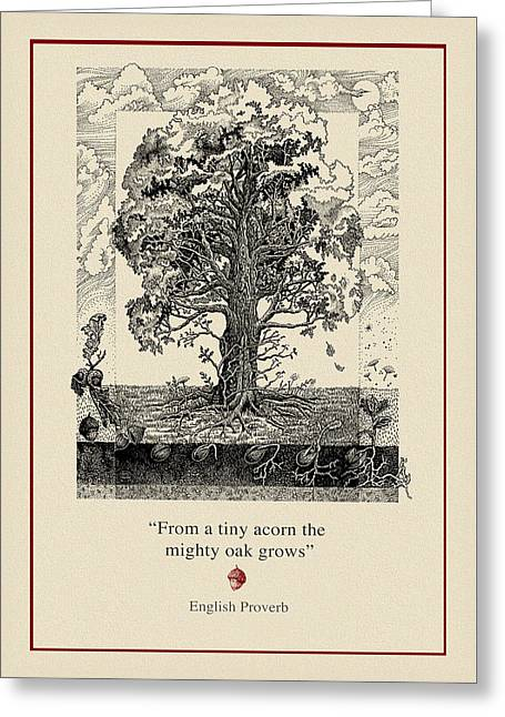 Acorns Greeting Cards - The Mighty Oak Greeting Card by Ernestine Grindal