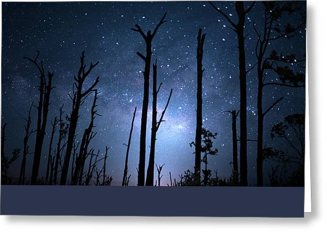 The Milky Way Forest Greeting Card by Mark Andrew Thomas