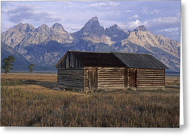 Log Cabins Greeting Cards - The Molton Homestead Greeting Card by Doug Davidson