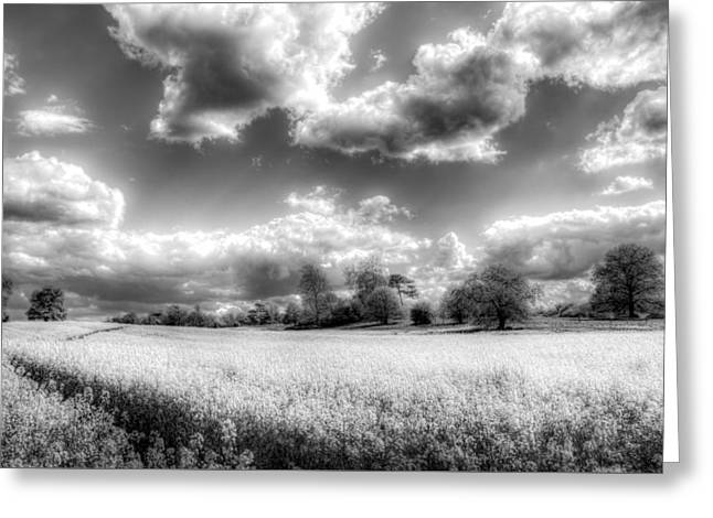 Farmers Field Greeting Cards - The Monochrome Farm Greeting Card by David Pyatt