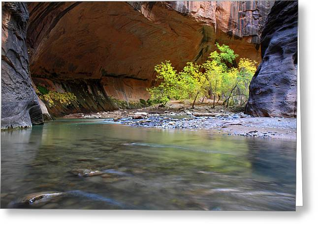 Narrow Canyons Greeting Cards - The Narrows in Zion Greeting Card by Pierre Leclerc Photography