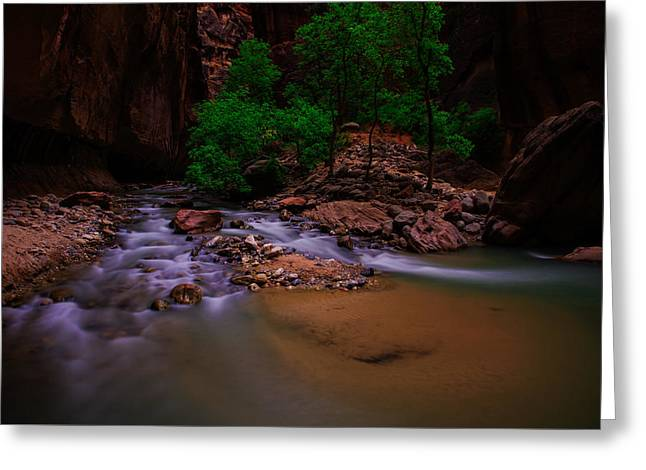 Wall Street Greeting Cards - The Narrows waterfall Zion National Park Greeting Card by Scott McGuire