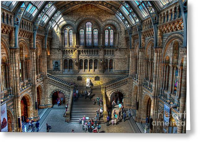 The Natural History Museum London UK Greeting Card by Donald Davis