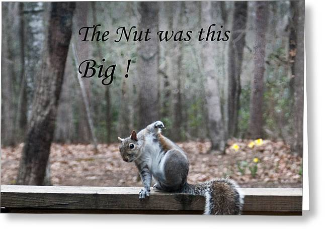 The Nut Was This Big Greeting Card by Douglas Barnett