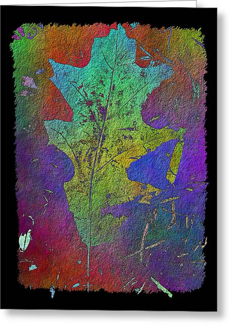 Jagged Border Greeting Cards - The Oak Leaf Greeting Card by Tim Allen