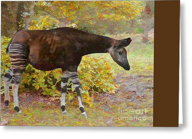 Nature Paintings Greeting Cards - The Okapi Greeting Card by Judy Kay