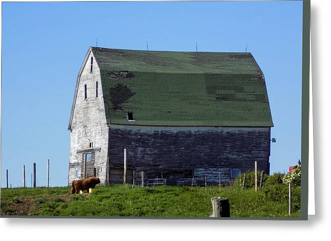 Maine Agriculture Greeting Cards - The Old Anderson Barn Greeting Card by William Tasker