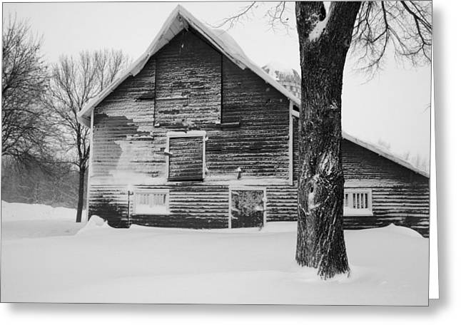 White Barns Greeting Cards - The Old Barn Greeting Card by Julie Lueders