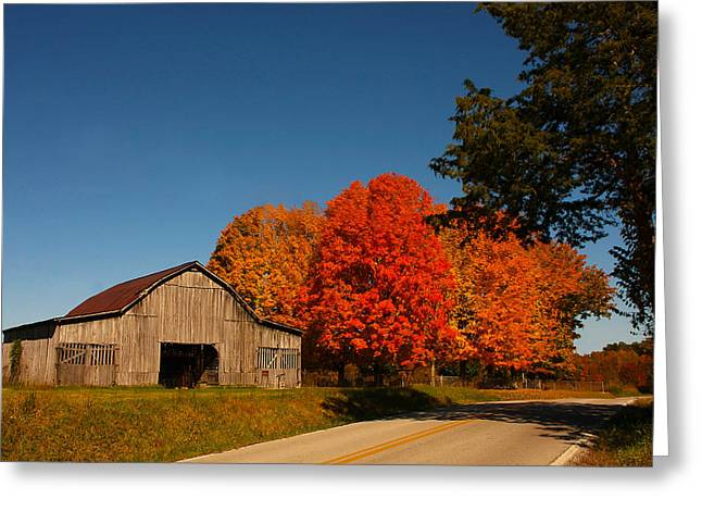 Fall Grass Greeting Cards - The Old Barn Greeting Card by Susan Pantuso
