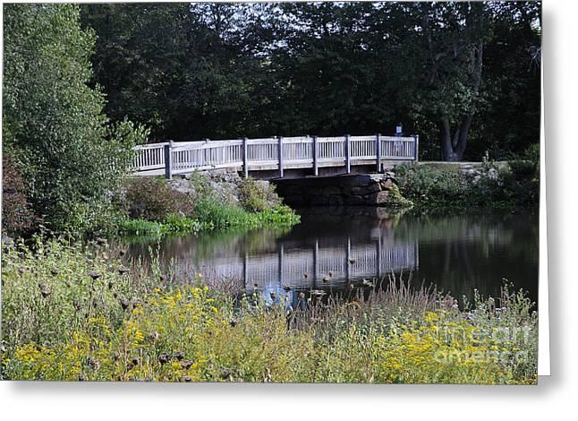 The Old Bridge Greeting Card by Jim  Calarese