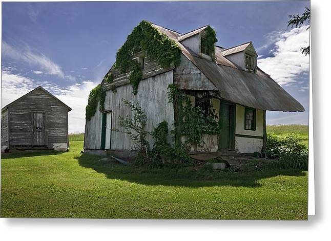 Overgrown Greeting Cards - The Old Homestead Greeting Card by Murray Bloom