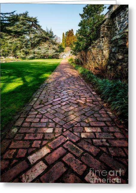 Photographs Digital Art Greeting Cards - The Old Path Greeting Card by Adrian Evans