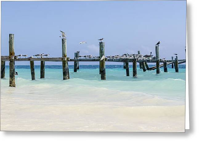 Surfing Art Greeting Cards - The Old Pier Panoramic Greeting Card by Alanna Dumonceaux