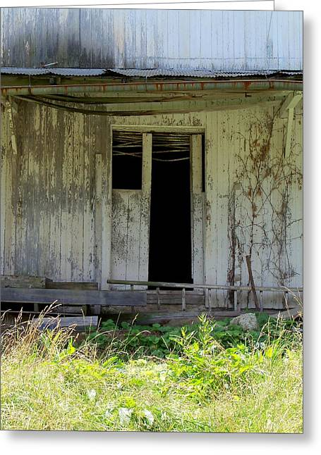 Tin Roof Greeting Cards - The Old Shed Greeting Card by Katie Beougher