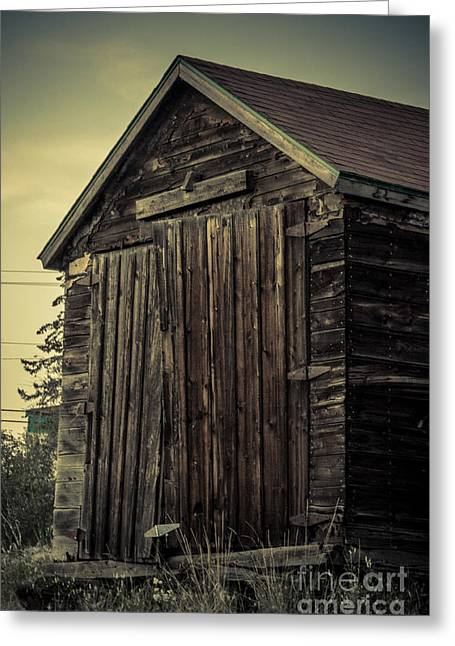 Sheds Digital Art Greeting Cards - The Old Shed Greeting Card by Lisa Killins