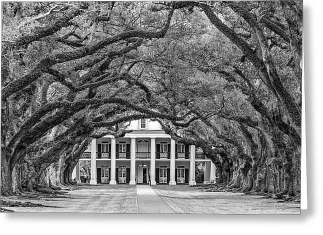 The Old South Bw Greeting Card by Steve Harrington