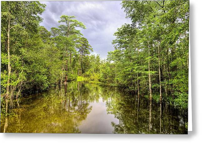 Rural Florida Greeting Cards - The Old Swimming Hole Greeting Card by JC Findley