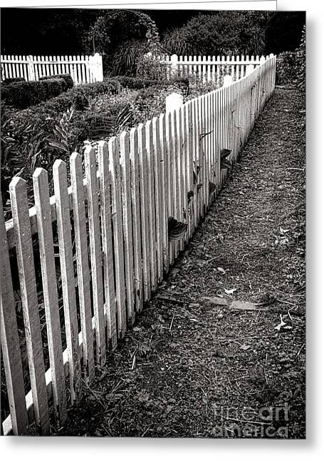 White Picket Fence Greeting Cards - The Old White Picket Fence Greeting Card by Olivier Le Queinec