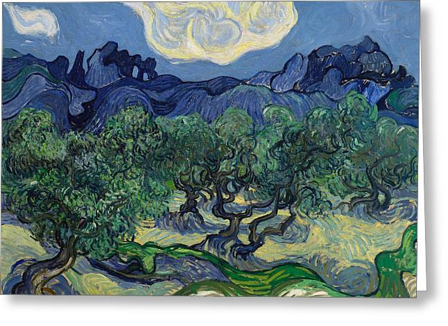 The Olive Trees Greeting Card by Vincent van Gogh