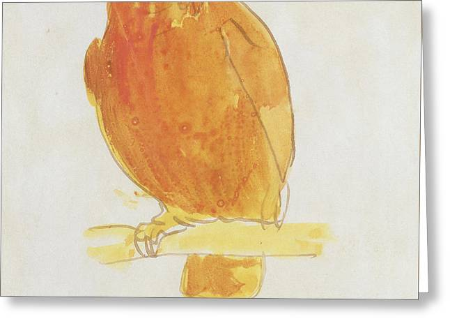 The Orange Color Bird Greeting Card by Edward Lear