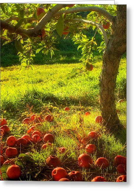 New England Farm Scene Greeting Cards - The Orchard Greeting Card by Joann Vitali