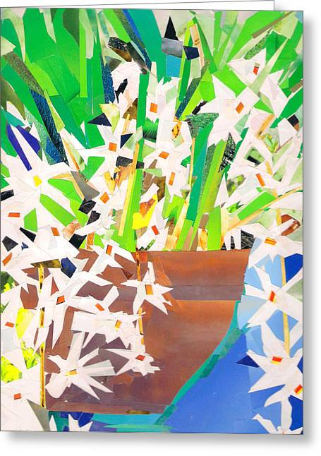 Epiphyte Mixed Media Greeting Cards - The orchid Coelogyne flaccida Greeting Card by Paul Frederick Bush