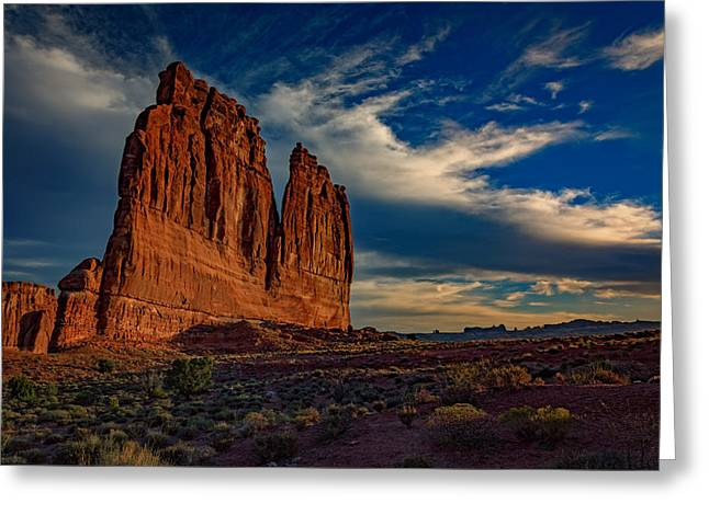 Sagebrush Greeting Cards - The Organ Greeting Card by Rick Berk
