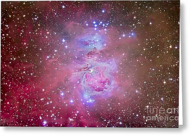 Emission Nebula Greeting Cards - The Orion Nebula Region Greeting Card by Alan Dyer