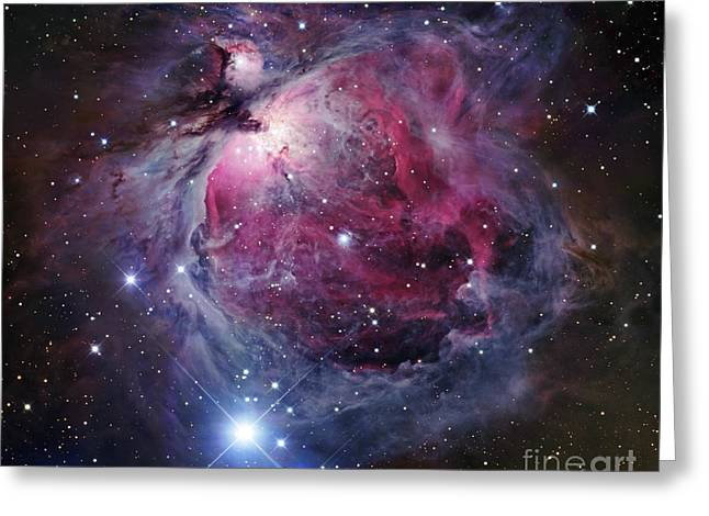 Interstellar Clouds Greeting Cards - The Orion Nebula Greeting Card by Robert Gendler
