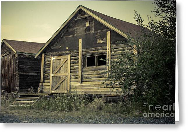 Sheds Digital Art Greeting Cards - The Other Old Shed Greeting Card by Lisa Killins