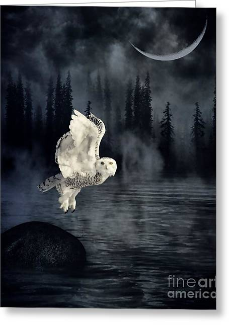 The Owl And Her Mystical Moon Greeting Card by Heather King
