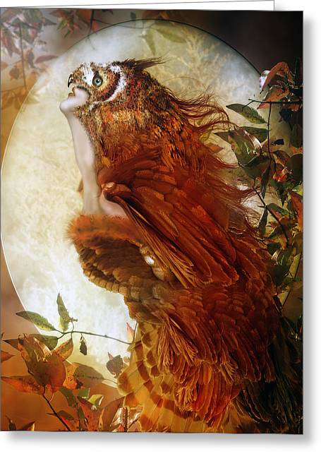 The Owl Greeting Card by Mary Hood