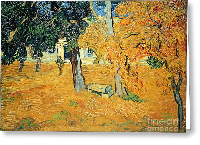 St Remy Greeting Cards - The Park at Saint Pauls Hospital Saint Remy Greeting Card by Vincent van Gogh