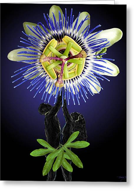 Floral Digital Art Digital Art Digital Art Greeting Cards - The Passion Between Us Greeting Card by Torie Tiffany